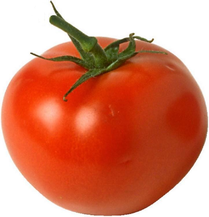 1.177 Taches de tomate sur du cuir blanc.jpg