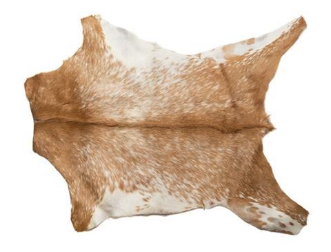 1.669 Enlever une tache de colle sur des poils ou de la peau de chèvre ou de mouton.jpeg