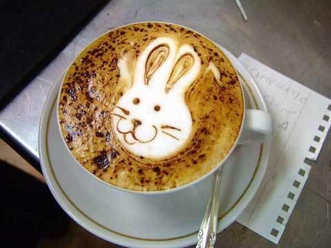 1.939 Enlever des taches de café sur du coton.jpg