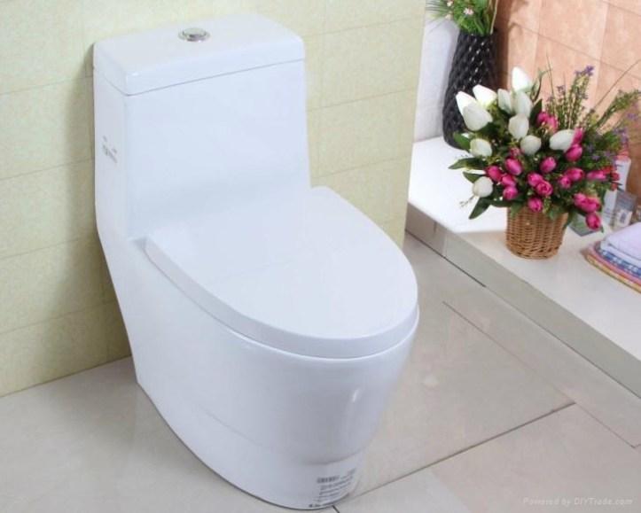 1.994 Nettoyer la cuvette de toilette (3).jpg