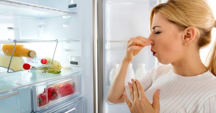 1.1254 Camouflé une mauvaise odeur dans le frigo.jpg