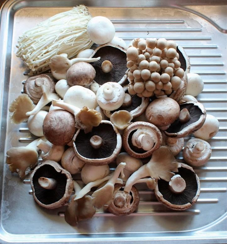 2.120 Comment savoir si les champignons sont encore bons.JPG