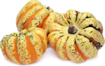All About Winter Squash - Heart of Gold Squash
