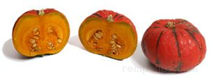 All About Winter Squash - Red Etampes Squash.jpg