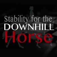 Stability for downhill horse Biorider