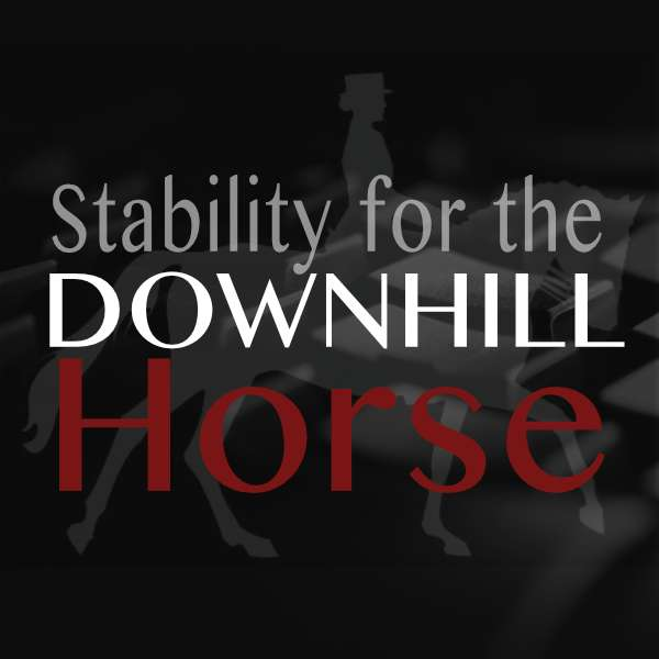 STABILITY FOR DOWNHILL HORSE