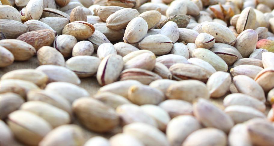 pistacchio di bronte bio al naturale