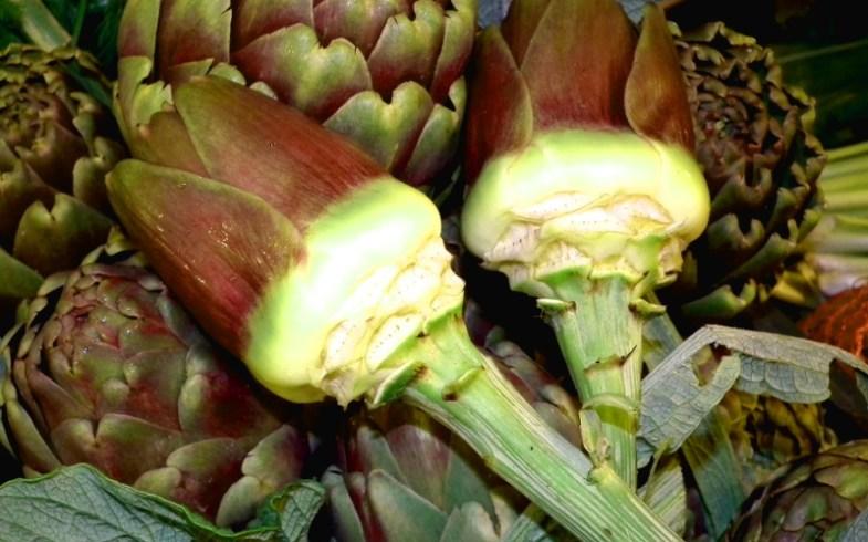 Open Day della Biodiversità: i carciofi di Ostuni ed altri ortaggi [OstuniNotizie.it]