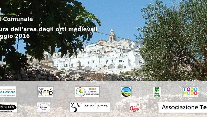 1^ giornata di cura dell'area degli orti medievali