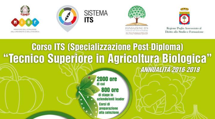 Corso per Tecnico Superiore in Agricoltura Biologica