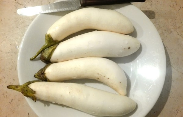 Melanzana bianca lunga Thai