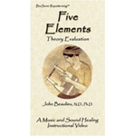 Five Element Pulse Evaluation (Digital Download)