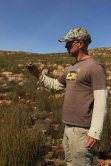 Alan Lee with Hottentot buttonquail