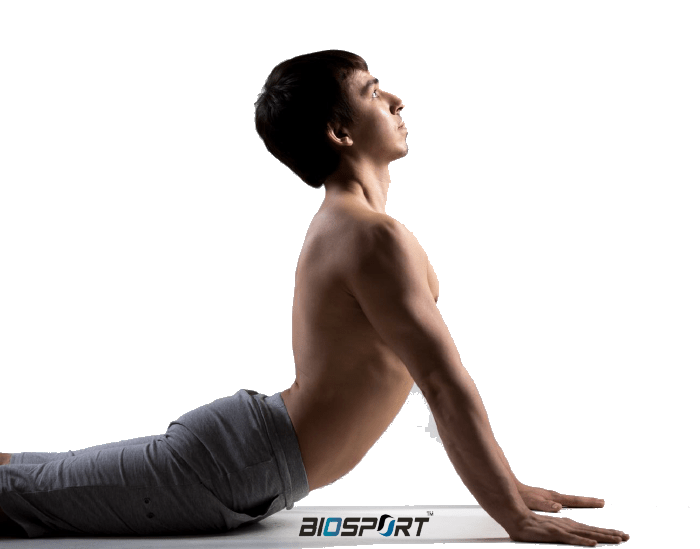 BioSport – Home Workout Bible Course