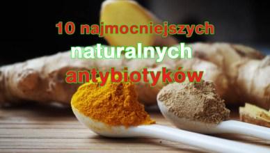 10 najmocniejszych naturalnych antybiotyków