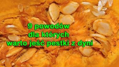 9 powodów dla których warto jeść pestki dyni