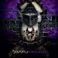 Seit einigen Tagen nenne ich nun das aktuelle Soulfly Album mein eigenen und ich muss sagen, es läuft derzeit täglich bei mir im CD-Player. Nicht weil ich zu faul zum […]