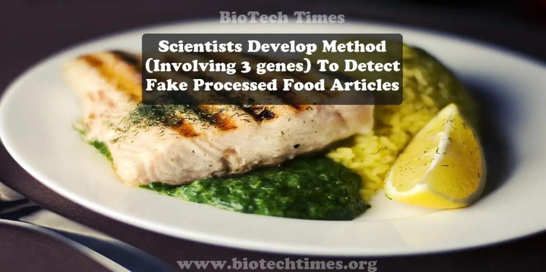 Fake Processed Food