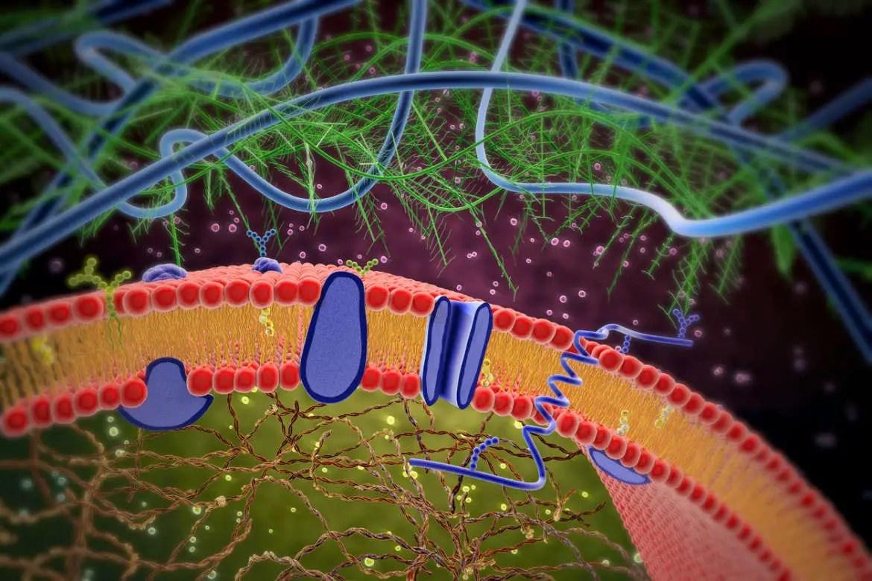 New electron microscopy