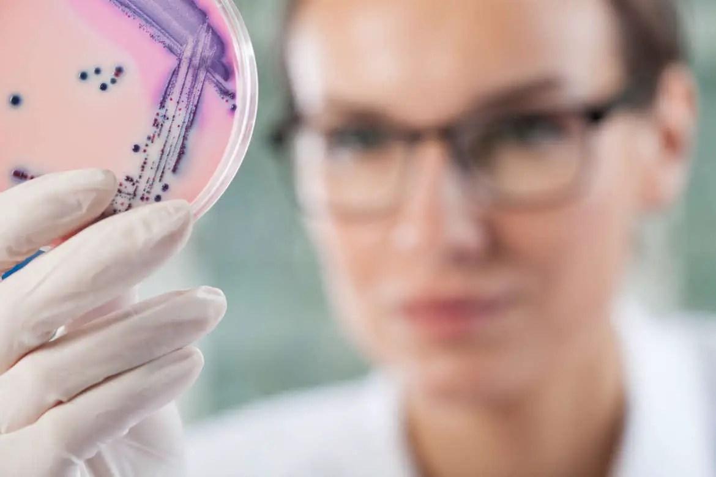 IISER Kolkata MSc Biotechnology