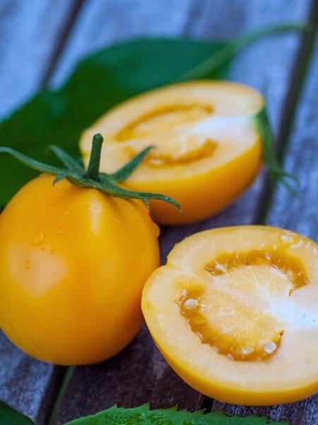 Kaki Coing Tomate