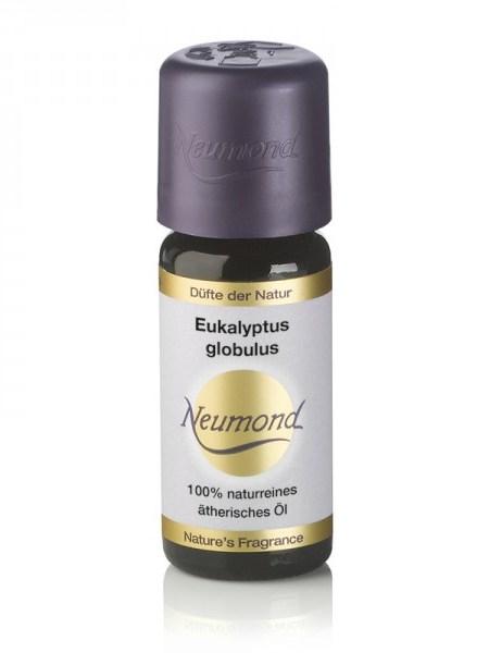 eukalyptus_globulus