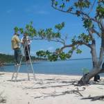Fig. 5. Rodrigo Fadini and Leidielly Ghizoni doing fieldwork in a sand beach along the Tapajos River. (Photo credit: Brendson Brito).