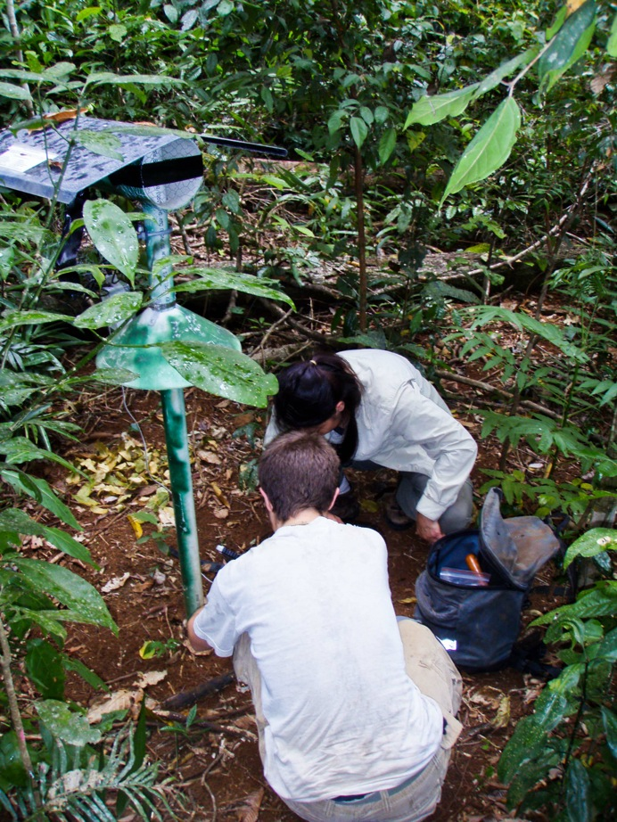 Fig. 4. Climate weather stations being serviced in the field.