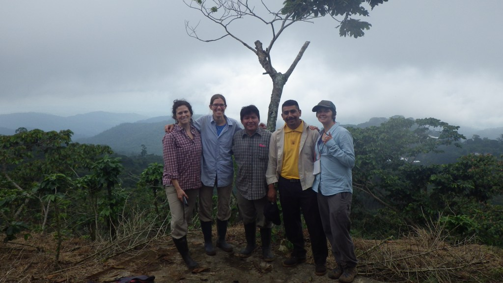 A ominous rainy season sky, a heavily pruned Inga shade tree, and a topographically variable coffee landscape behind the twig-nesting ant research team in Chiapas, Mexico in June of 2013. From L to R: Katherine Ennis, Stacy Philpott, Gabriel Domínguez Martínez, Félix Ángel Rodríguez, and Penelope Gillette. (Photo by Penelope Gillette).