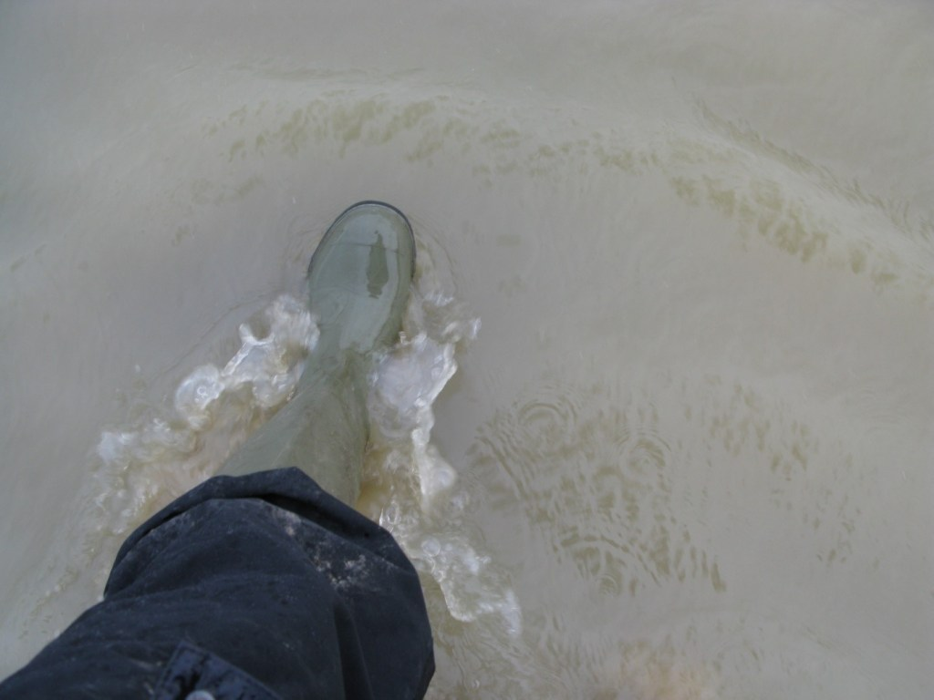 Wading through the flood waters.