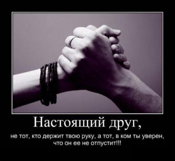 Прикольные картинки про дружбу со словами (35 фото ...