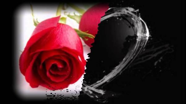 Красивые картинки про любовь (37 фото) • Прикольные ...