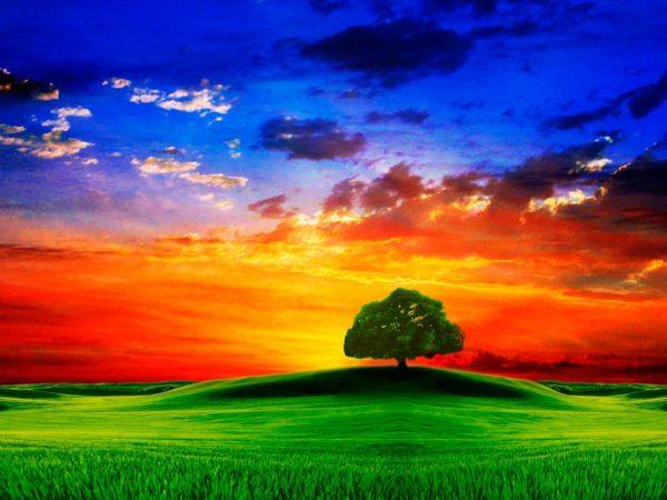 Красивые картинки природы (41 фото) 🔥 Прикольные картинки ...