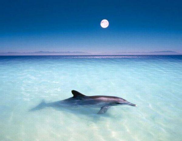 Красивые Картинки С Пляжем И Морем