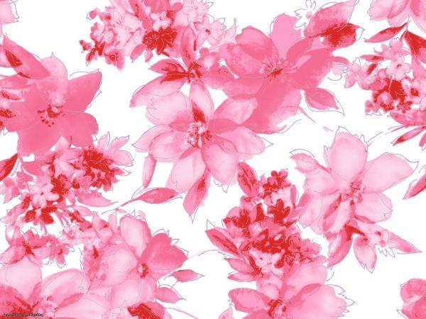 Нарисованные картинки красивые цветы (37 фото ...