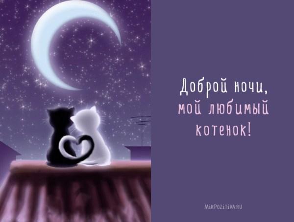 """Красивые картинки """"Спокойной ночи, любимый мой!"""" (35 фото ..."""