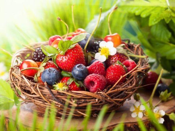 Красивые картинки ягод на рабочий стол (35 фото ...