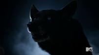 Derek wolf