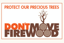 Don't Move Firewood Graphic