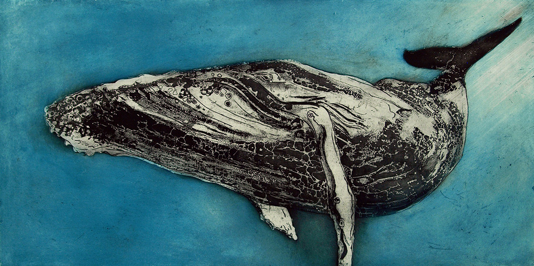 Marion MacPhee - Humpback Whale III