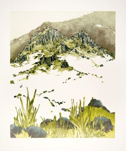New Grass, South Lakes (linocut, 365 x 440)