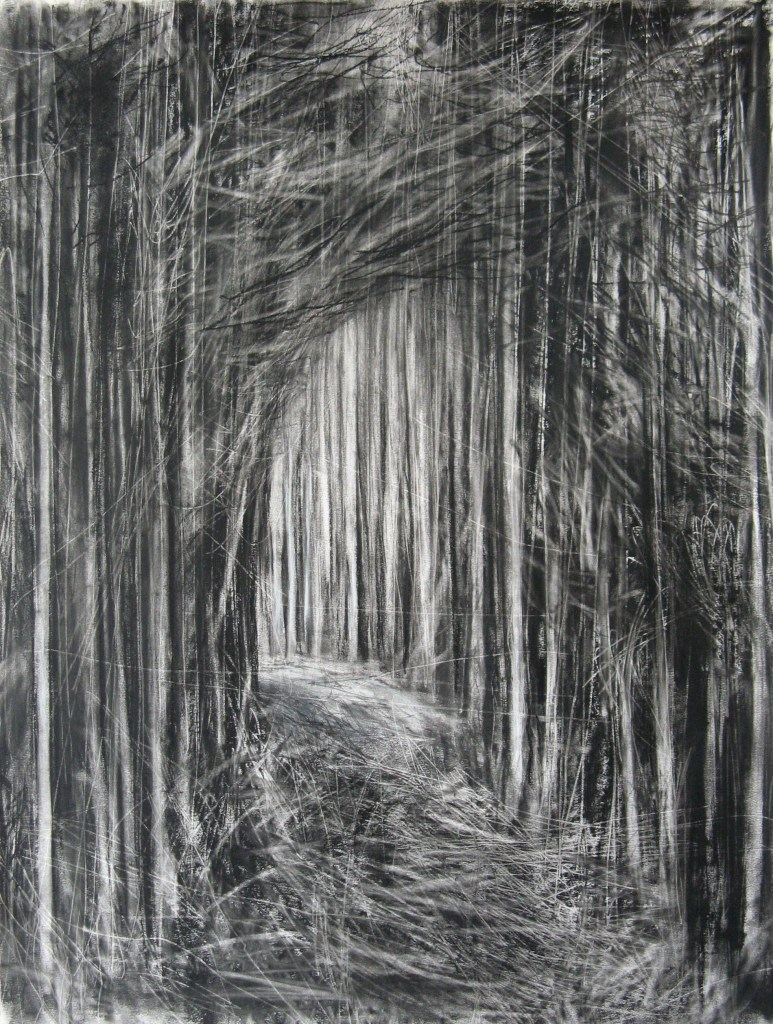 'Path Through the Forest II', Janine Baldwin, charcoal, graphite and pastel on paper, 70 x 53cm