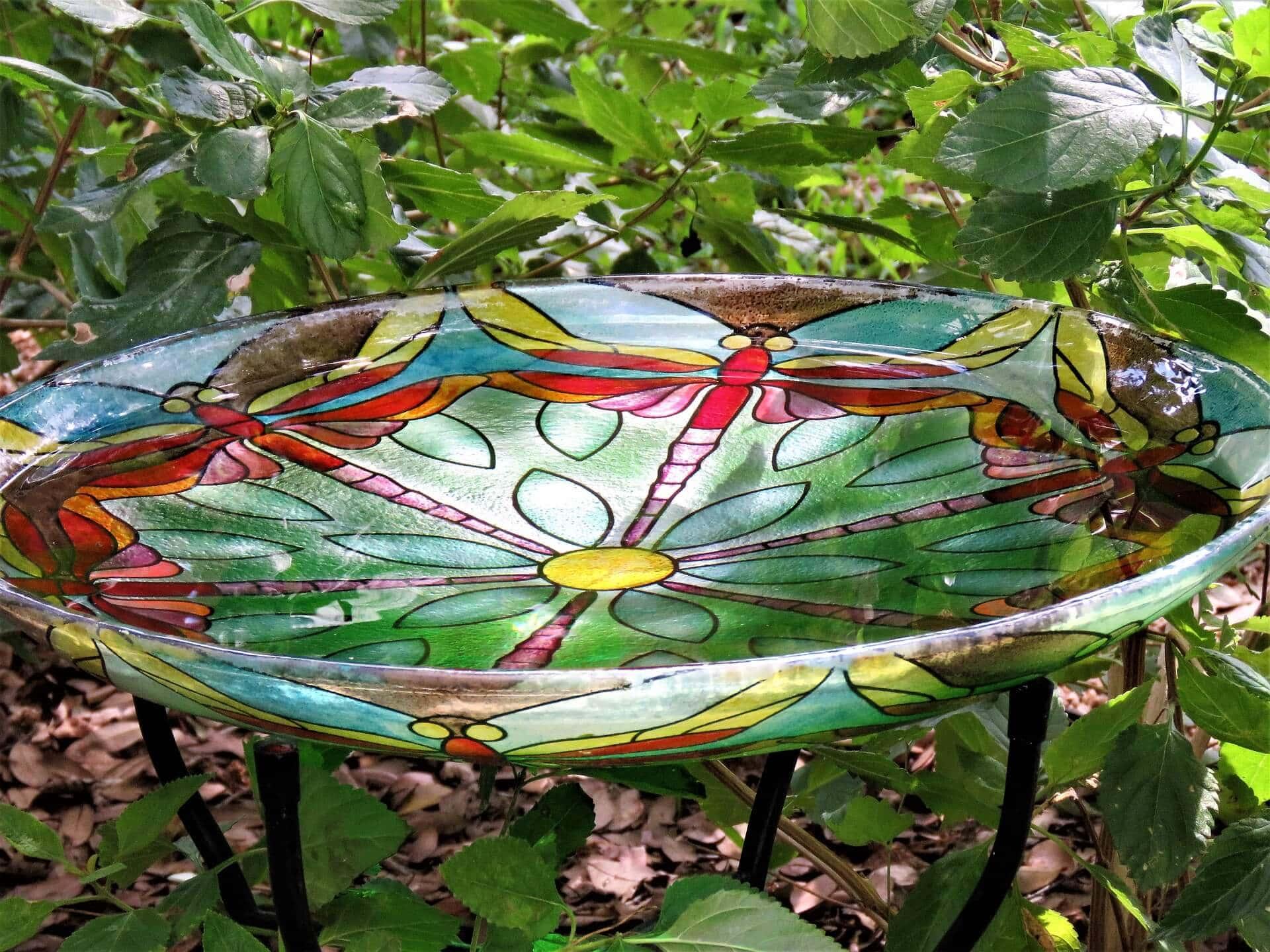 Garden Bird Bath Information For Winter And Summer