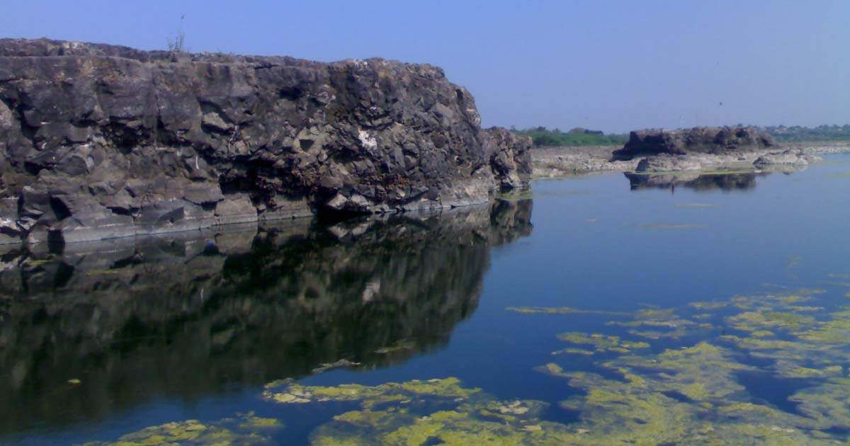Nandur_Madhyameshwar_Bird_Sanctuary