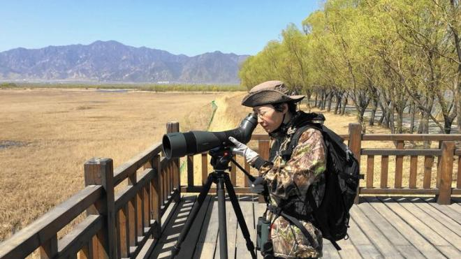 Li Qingxin (Grace) from China Birdwatching Society at Yeyahu Nature Reserve.