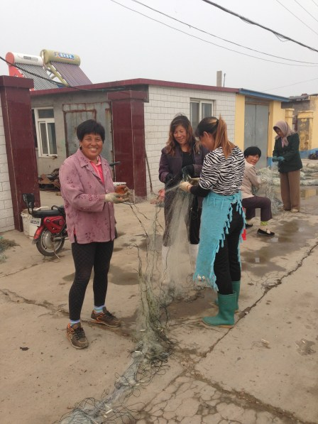 Local ladies maintaining the shrimp nets