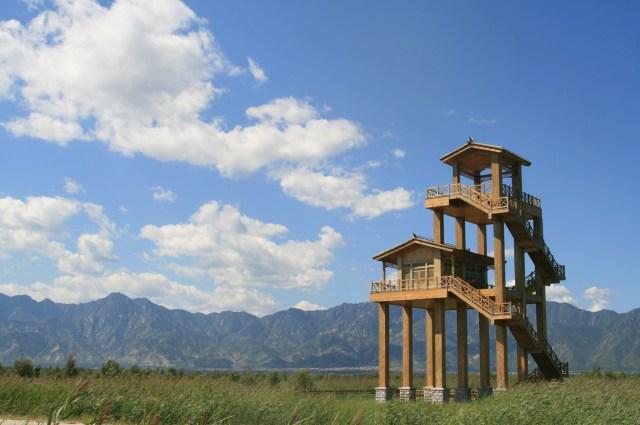 2013-08-30 new tower hide at Yeyahu NR