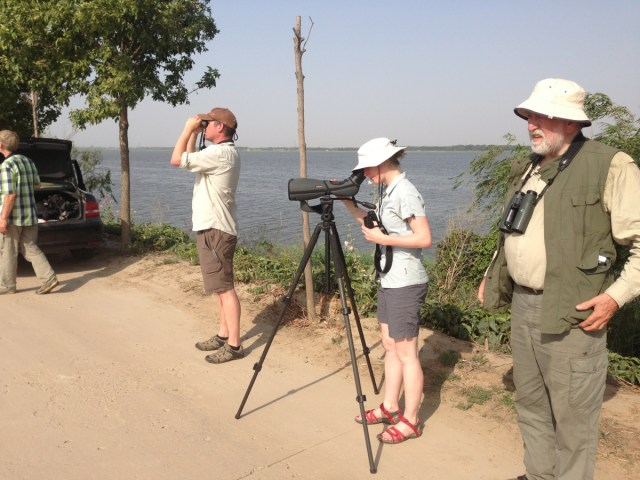 Lyndon, Andrew, Rachael and Dick enjoying views of Baer's Pochard.