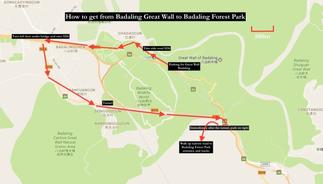 badaling-wall-and-forest-park