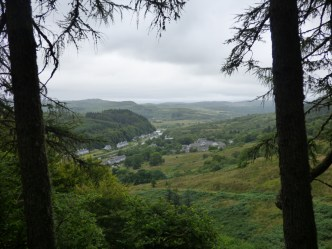 Looking from the forest path at Dunadry